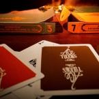 ace-fultons-casino-ob-4